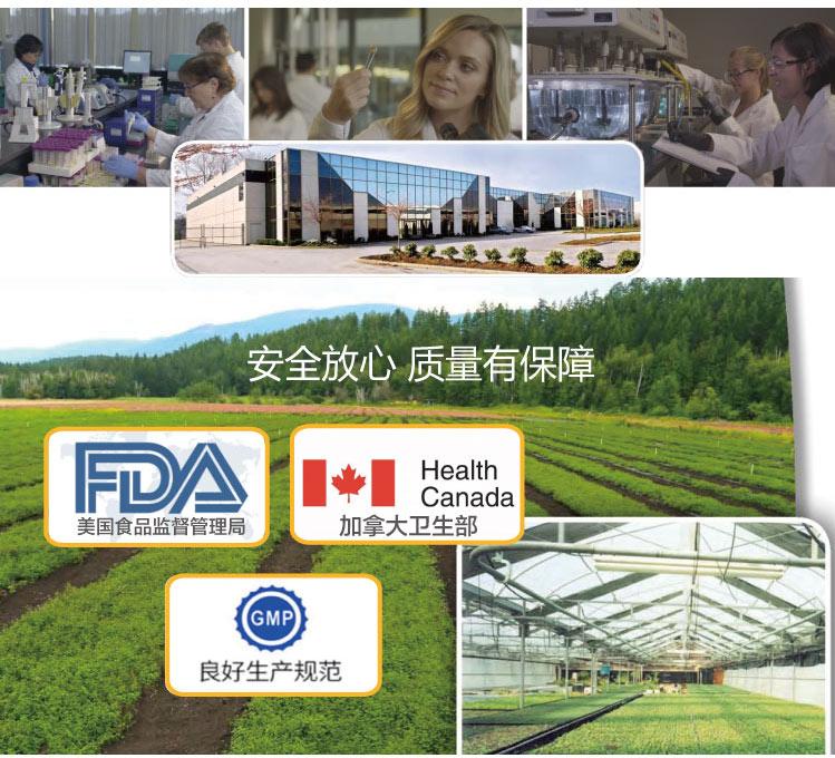加拿大维生能 胶原蛋白赖氨酸维生素C片 120粒/瓶